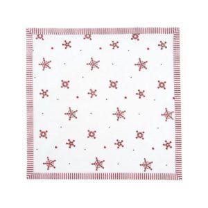 serviettes beauté de l'hiver
